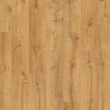 PUCP40088 - Autumn Oak Honey
